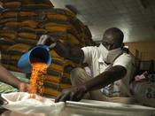 Action Against Hunger volunteer Tondrua Ali helps prepare Quarantine Kits